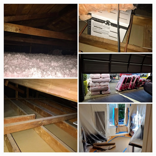 Attic insulation in my attic.