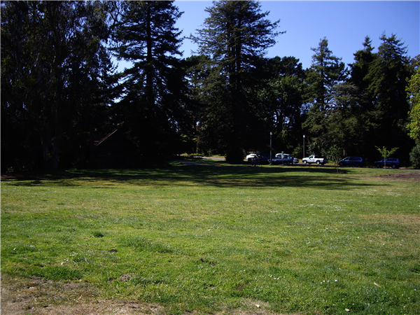 A view of the grassy site that was reserved. The two grills and picnic tables are behind us!