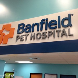 Banfield Pet Hospital located in Petsmart.