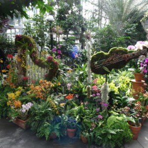 Just one of the many displays at the Botanical Garden in Washington DC.