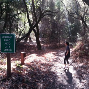 On the Canyon Trail in Monte Bello, it eventually leaves Palo Alto, and there's a sign to mark the border!