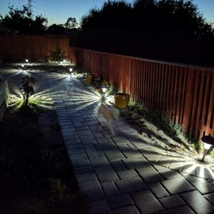 Very bright Solar garden lights for my backyard garden.